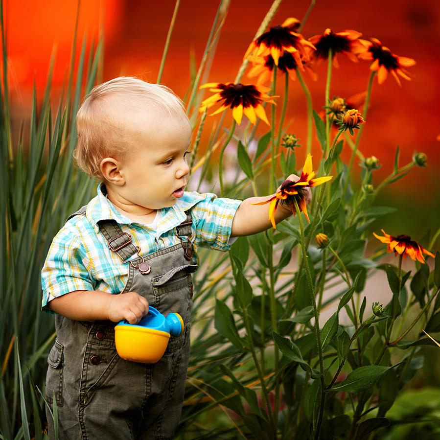 Quizz le jardinage tbear blog for Jardinage le monde