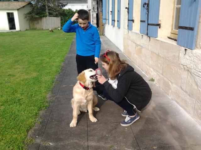 Luc en arrière, Manon et Hope au premier plan chez eux à Coutras France en février dernier