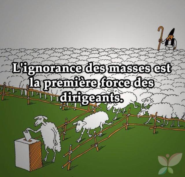 ignorance des masses