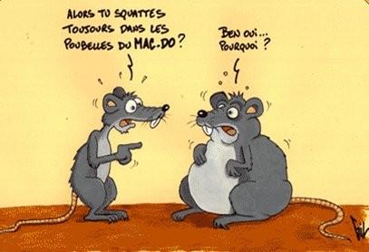 Macdo