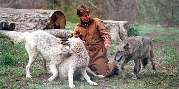 Hélène Grimaud avec les loups