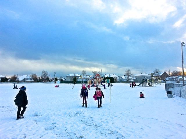Le parc derrière l'école en ce 19 novembre 2014 - T-Bear