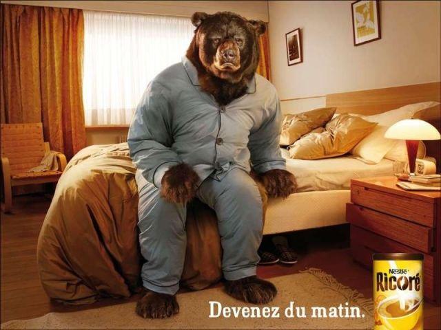 réveil de l'ours