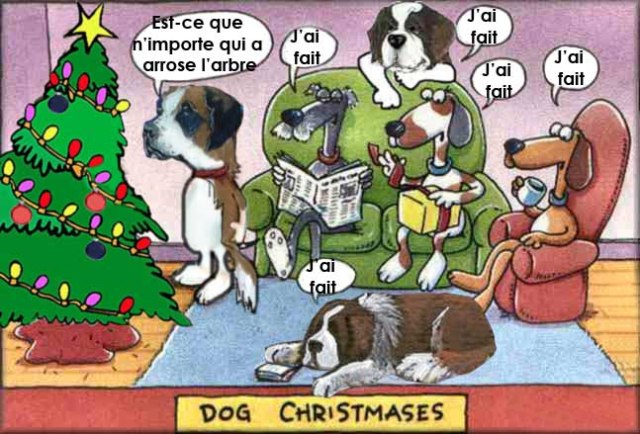 dog-christmas3
