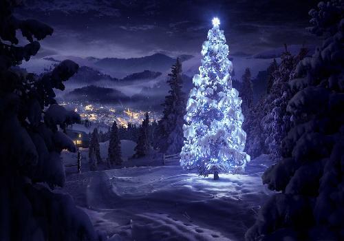 sapin de Noël neige