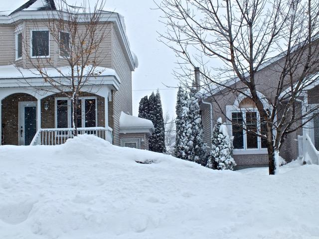 Grande maison de gauche avec à sa droite à peine visible, la porte de la tanière à T-Bear
