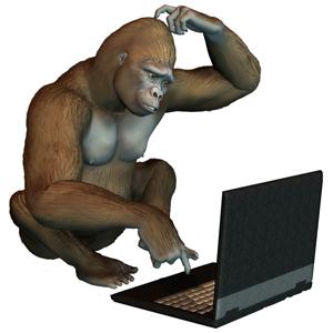 gorille-ordinateur-petit