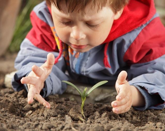 activites-pour-jardiner-avec-les-enfants