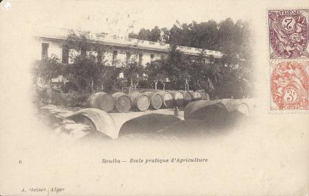 L'atelier de vinification de l'école d'agriculture de Rouiba