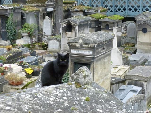 gardien à vie de cimetière