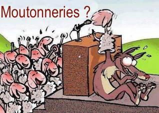 democratie_loup_mouton