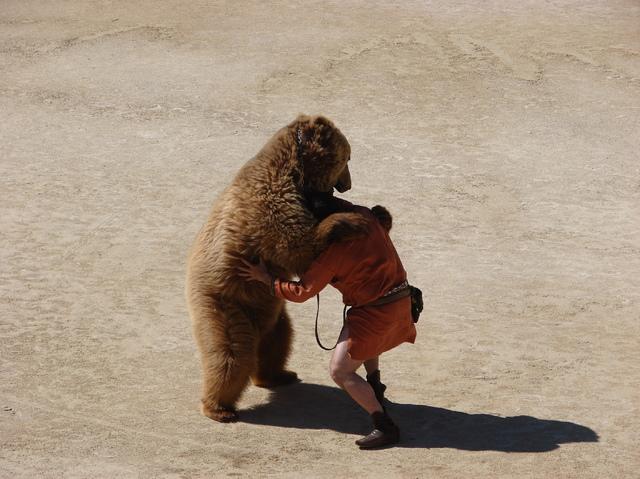 Les-Grands-Jeux-Romains-aux-Arenes-de-Nimes-la-bataille-avec-l-ours