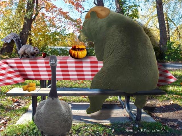 T-Bear partageant son festin de l'action de graisse avec ses amis - montage T-Bear
