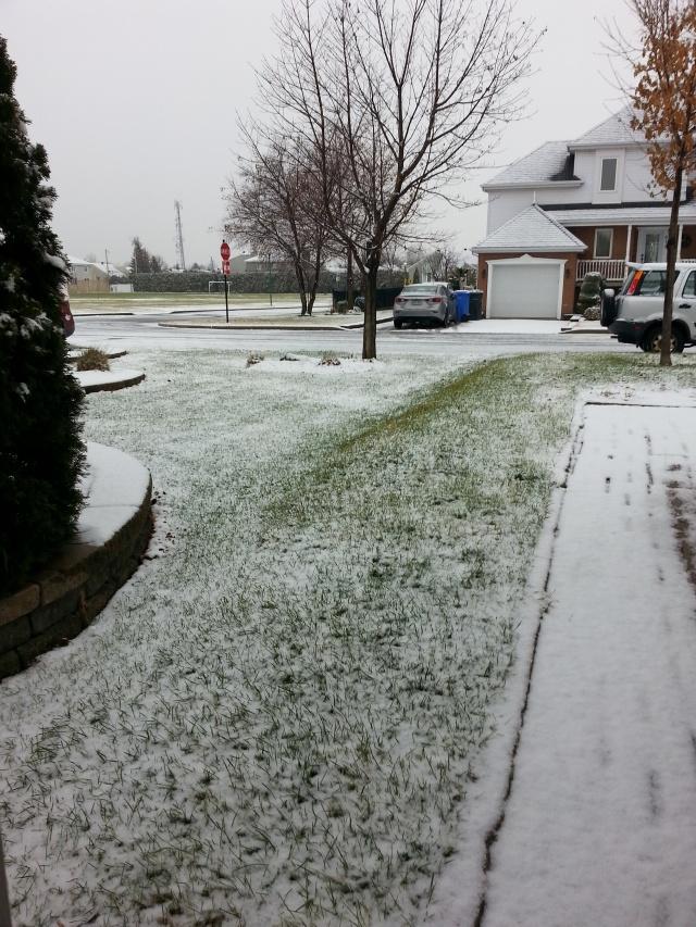 première neige le 21 décembre 2015 - T-Bear