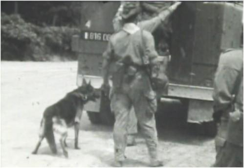 Maître et chien du peloton cynophile du 4e hussard, se préparant à embarquer pour intervenir quelque part en Algérie pendant la guerre.