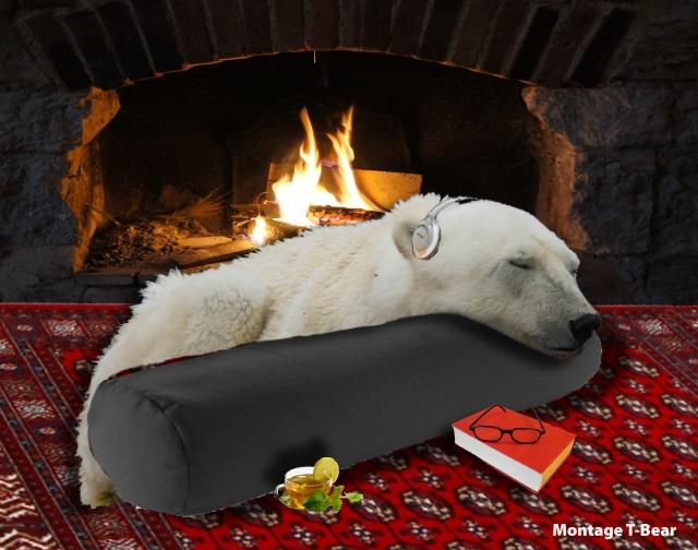 Comment à son âge T-Bear a passé le réveillon - T-Bear