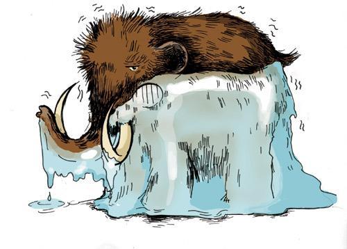 illustration-mammouth-congel