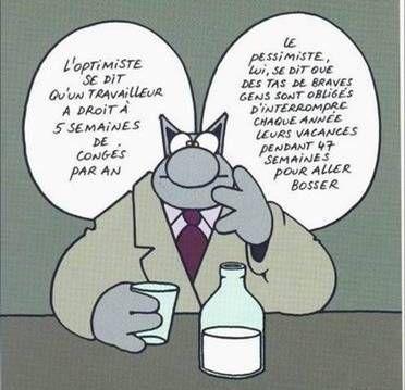 boulot-le-chat