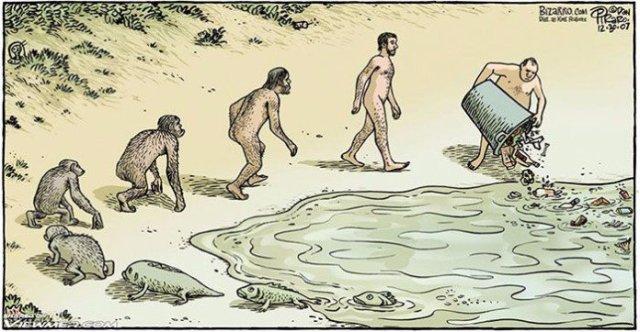 theorie-evolution-darwin-dessins-1-1-696x362