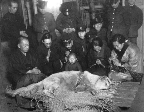 funérailles de Hachi Kö