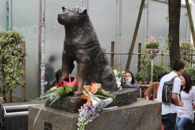 La statue toujours fleurie de Hachi Kö devant la gare de Shibuya