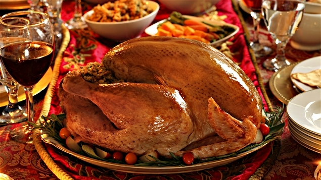 151007_zl666_tete_thanksgiving_20111127_sn635