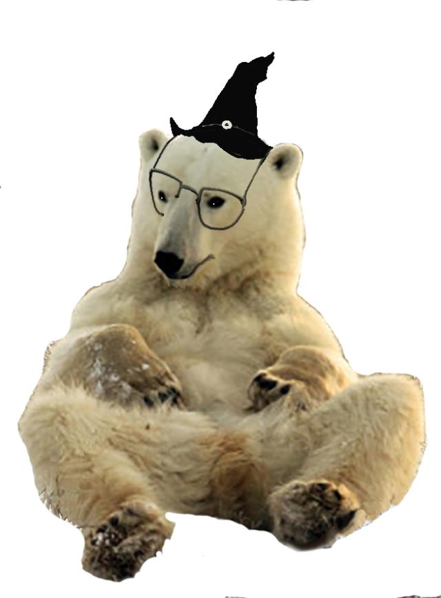 t-bear-sorcier